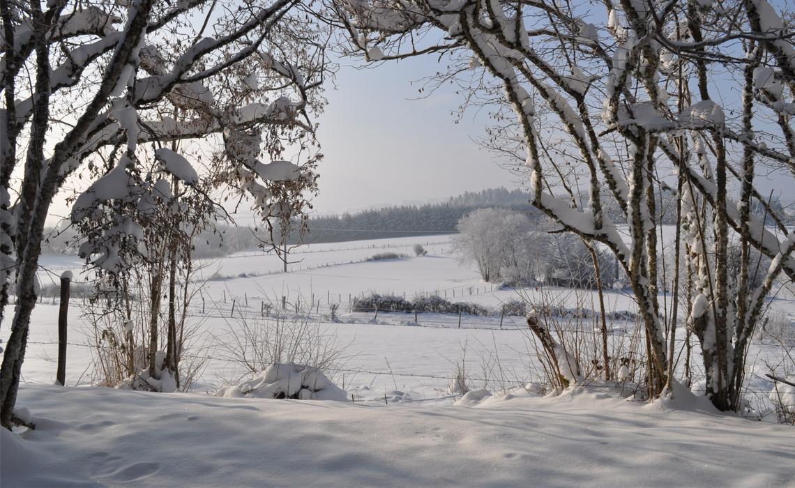 Sous la neige 01