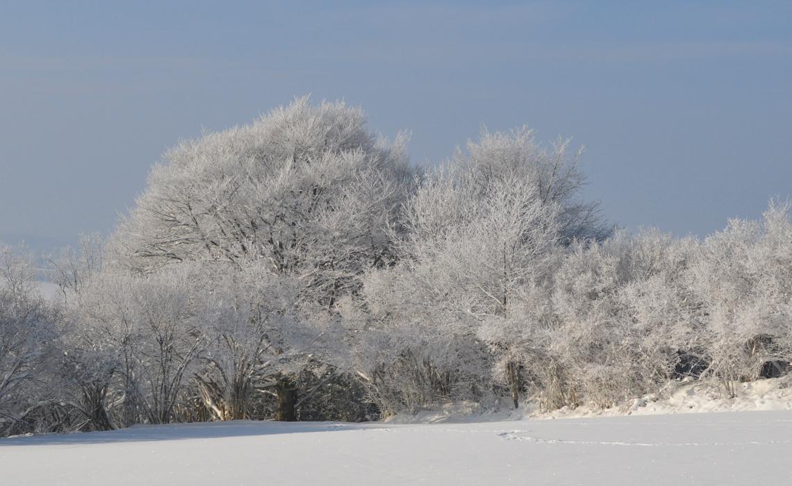 sous la neige 03